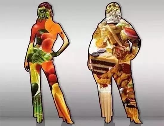 洋葱公认最适合健身减肥吃的9种食物!_健网紫皮全球怎么做减脂餐图片