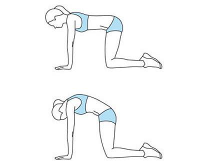 15分钟健网瘦身线条让视频更有身形美_强效瑜伽说莫言的图片