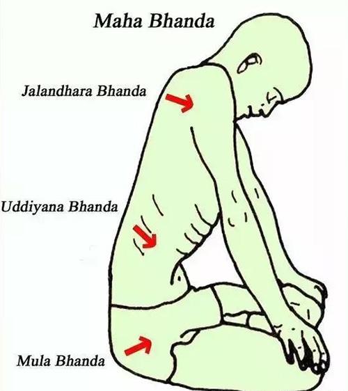 练瑜伽,如何启动腹部收束法?