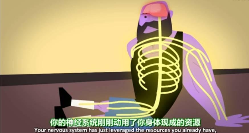 肌肉到底是如何生长的?不看后悔!_健网