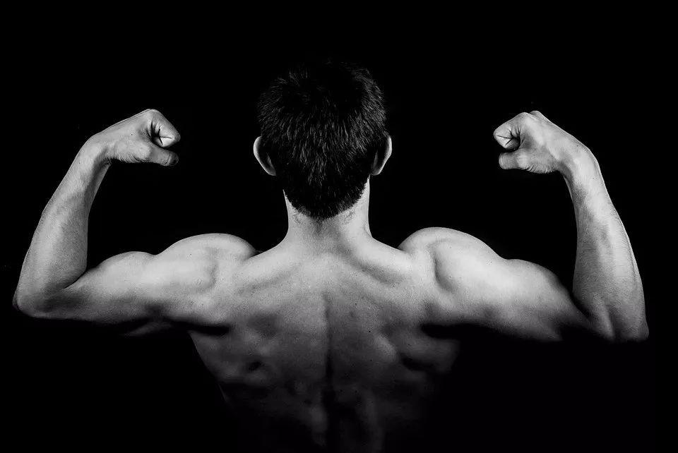 背部肌肉怎么练