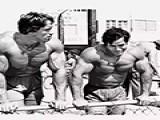 高个子VS矮个子 哪种健身会更有优势