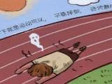 30度以上的气温,可以跑步吗?