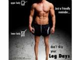 想要脱胎换骨?练腿才是王道!8大黄金动作铸造强壮大腿稳固下盘