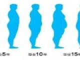 为啥越忙越肥?越减越累?脂肪在跟我开玩笑么?