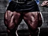 为什么再强的大神都用过史密斯练腿?