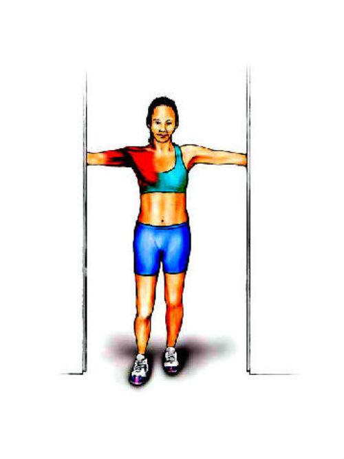 女性胸部训练经典动作 健网