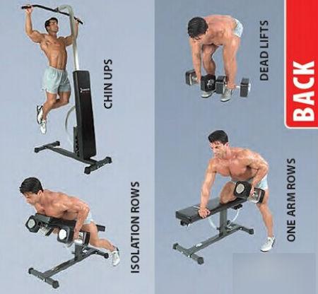 哑铃的正确锻炼方法 如何正确举哑铃锻炼肌肉你做对