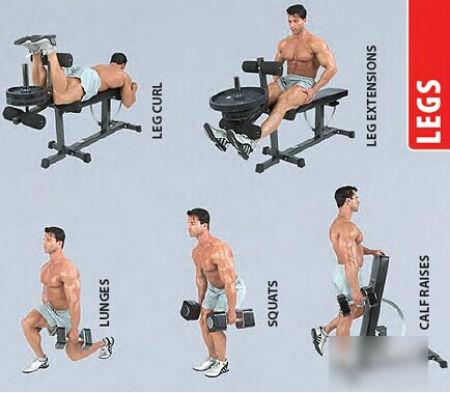 哑铃的正确锻炼方法-科学健身-认知网
