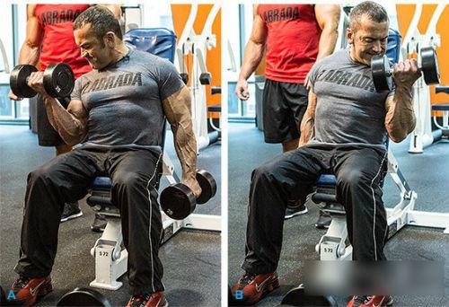 八个手臂肌肉锻炼方法图解