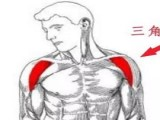 三角肌前束最实用的练习动作 前平锻炼三角肌前束常见的4个错误